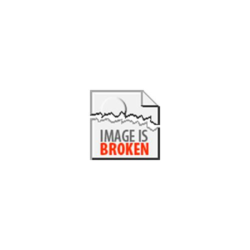 Buckaru's Guide to eBay: An Introduction to Profiting with Online Auctions